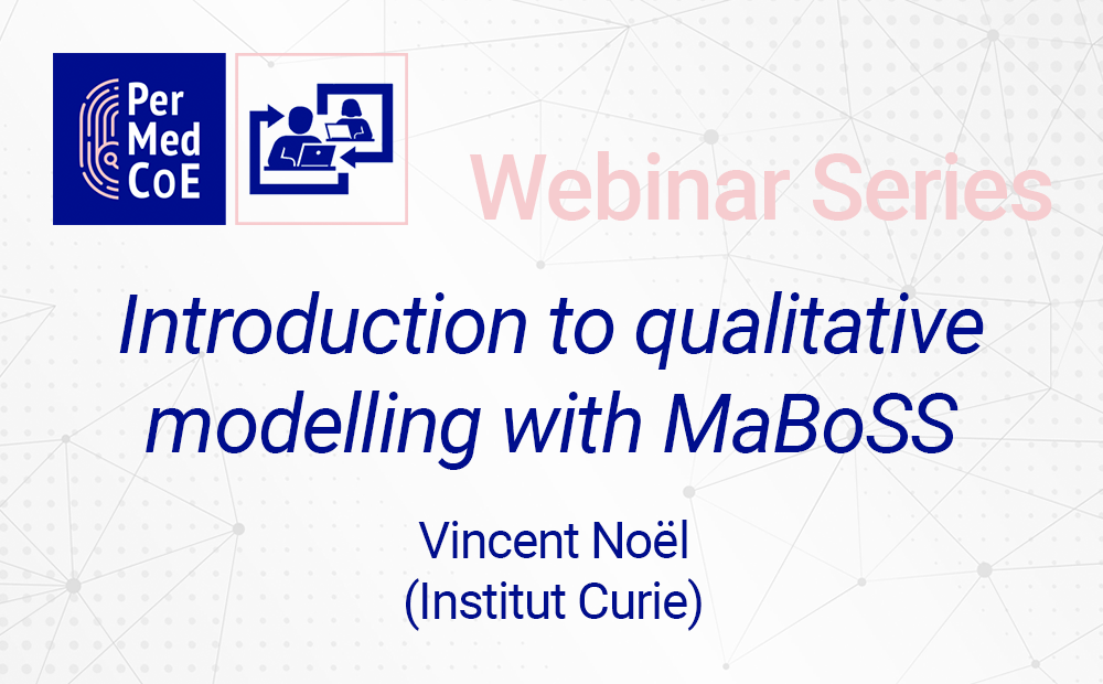 Introduction to qualitative modelling with MaBoSS