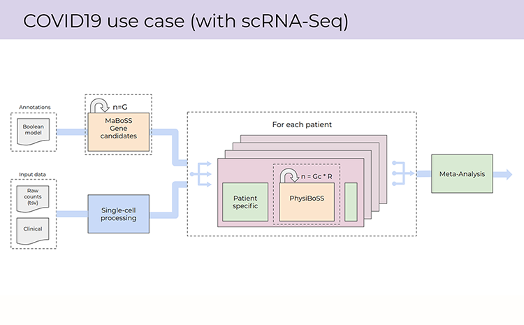 Pilot workflow for personalised COVID19 modeling