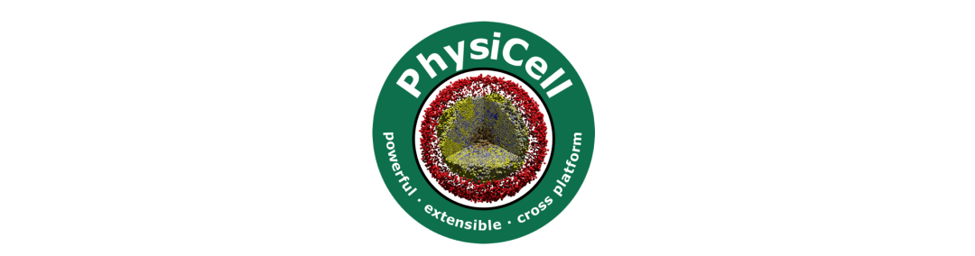 PerMedCoE experts at 2021 Virtual PhysiCell Workshop and Hackathon