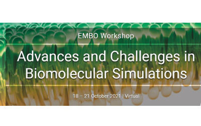 Advances and Challenges in Biomolecular Simulations